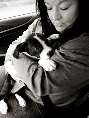 Mary on the way home with her newest rescue, Sully