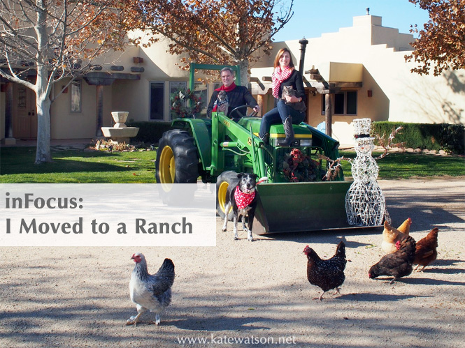 inFocus: I Moved to a Ranch