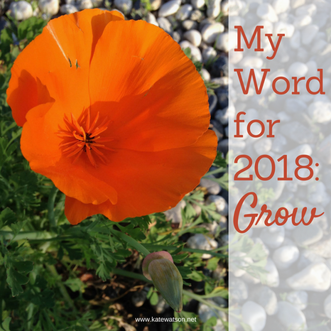 word-for-2018